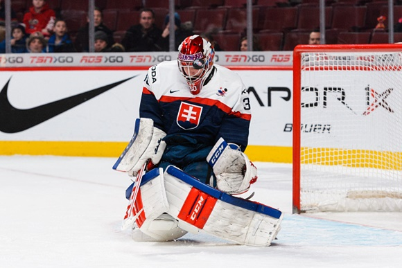 Denis Godla - Team Slovakia - 2015 IIHF World Junior Championship